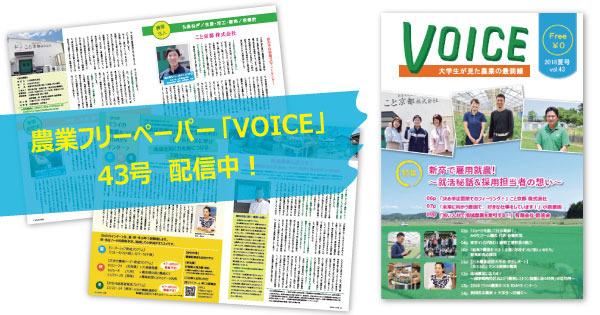 1806_voice43.jpg