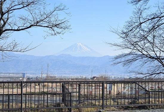 190221_取材_中込農園さん (1).jpg