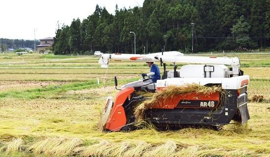 稲刈り2017_07.jpg