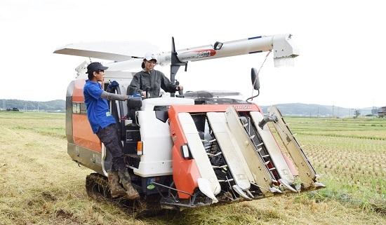 稲刈り2017_08.jpg