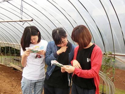荒木農園さん (3).jpg