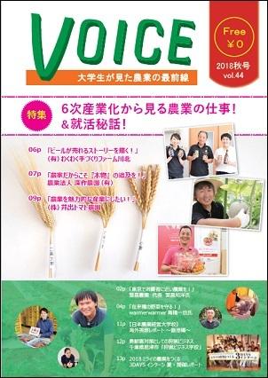 voice44.jpg