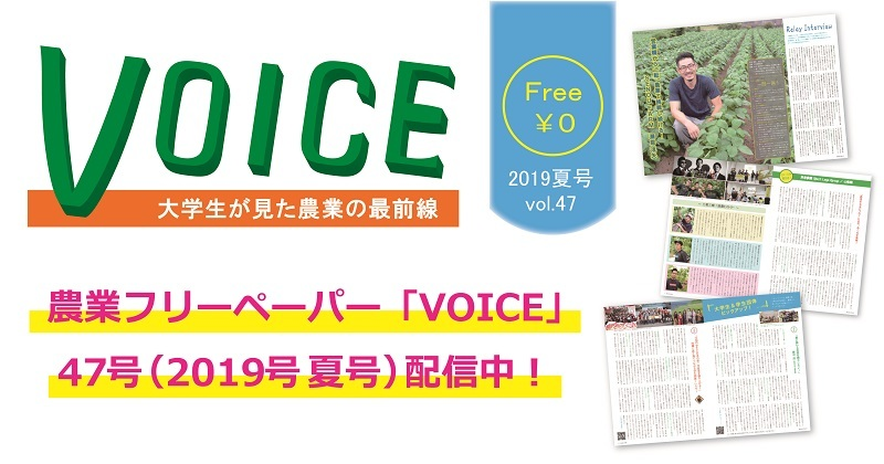 voice47.jpg